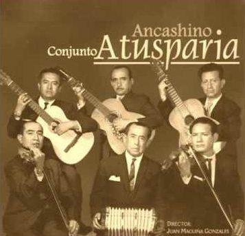 Se necesita (2) Violinistas – ATUSPARIA
